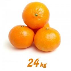Mandarina 24 kg