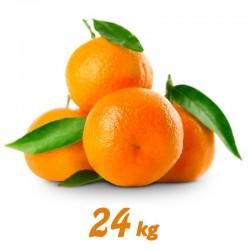 Naranjas 24 kg